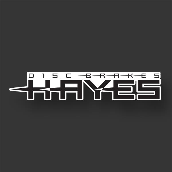HAYES DISC BRAKE ~ ~ ~ ~ ~  Bike Bicycle Sticker Decal