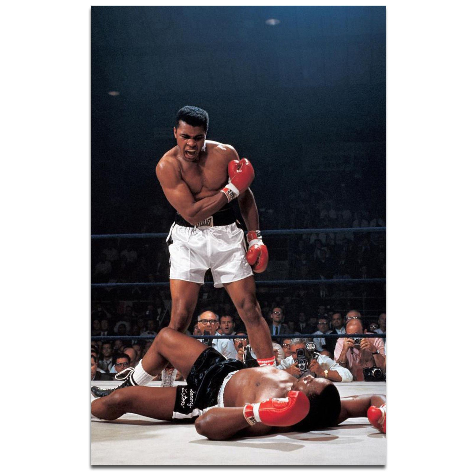 King of Boxing Great Top Player  Fabric Poster 16x16 24x24 Y548 Muhammad Ali