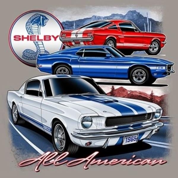 Other Car Manuals SHELBY MUSTANG 2009 OWNERS MANUAL FORD GT500 ...