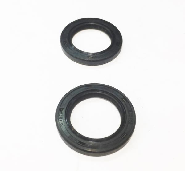 Lot of 2 Scag Oil Seal 481651 NOS