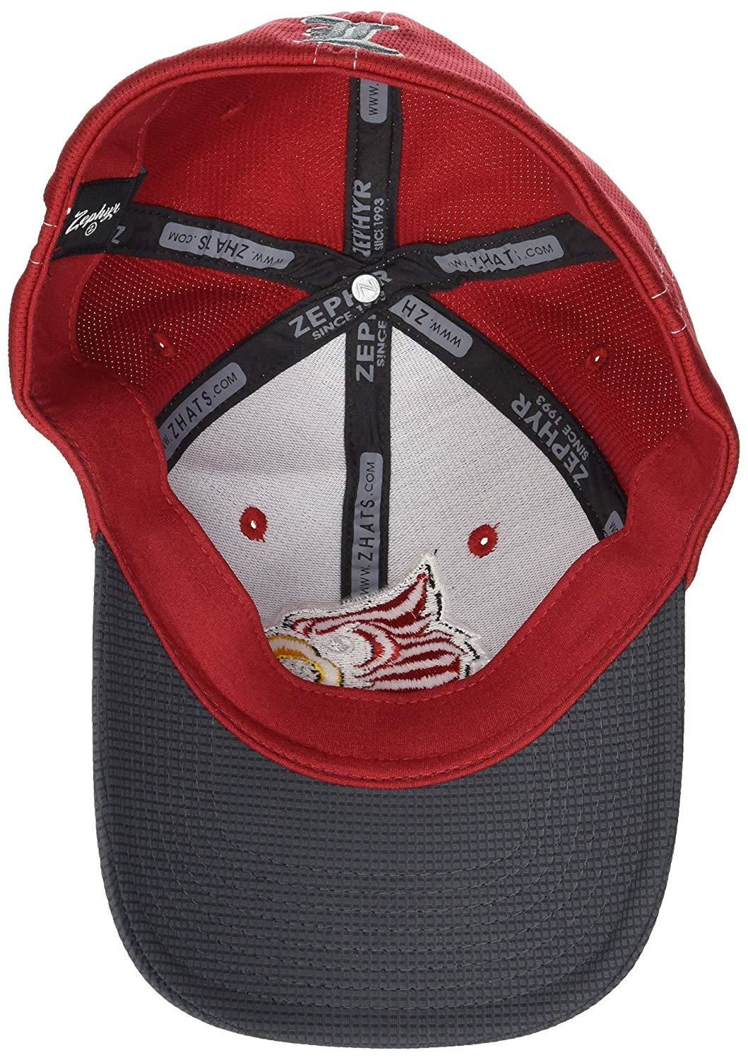 Medium//Large Heathered Team Color Zephyr Adult Men Challenger Cap